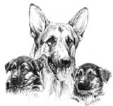 German Shepherd and Pups Business Cards